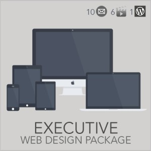 Executive Web Design Package