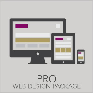 Pro Web Design Package